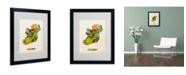 """Trademark Global Michael Tompsett 'Ireland Watercolor Map' Matted Framed Art - 20"""" x 16"""""""