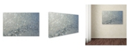 "Trademark Global Kurt Shaffer 'Frost Pattern Sun Stars' Canvas Art - 24"" x 16"""