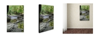 "Trademark Global Monica Fleet 'Crystal Rock' Canvas Art - 32"" x 22"""