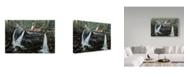 "Trademark Global Jeff Tift 'Solitude' Canvas Art - 12"" x 19"""
