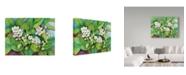 """Trademark Global Joanne Porter 'Flowering' Canvas Art - 14"""" x 19"""""""