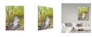 "Trademark Global Joanne Porter 'Running Brook' Canvas Art - 14"" x 19"""