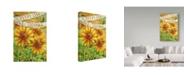 "Trademark Global Melinda Hipsher 'Sunflower Give Thanks Everyday' Canvas Art - 12"" x 19"""