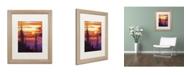 "Trademark Global David Lloyd Glover 'Golden Moment' Matted Framed Art - 16"" x 20"""