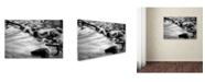 "Trademark Global Jason Shaffer 'Black River' Canvas Art - 47"" x 30"""