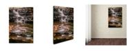 """Trademark Global Jason Shaffer 'Hidden Falls 2' Canvas Art - 16"""" x 24"""""""