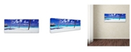 """Trademark Global David Evans 'View for One-Maldives' Canvas Art - 16"""" x 47"""""""