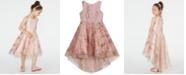 Rare Editions Little Girls Glitter-Mesh High-Low Dress