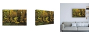 "Trademark Global Kurt Shaffer Photographs Autumn in the Rain Canvas Art - 27"" x 33.5"""