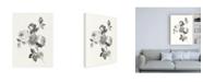 "Trademark Global Wild Apple Portfolio Rose Blossoms Gray Canvas Art - 19.5"" x 26"""