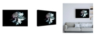 "Trademark Global Philippe Hugonnard Wild Explosion Collection - the Zebra Canvas Art - 19.5"" x 26"""