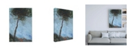 "Trademark Global Paul Baile Lone Moorland Pine Canvas Art - 19.5"" x 26"""