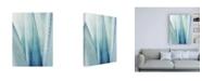 "Trademark Global Lupen Grainn Pale Blue Agave No. 1 Canvas Art - 27"" x 33.5"""