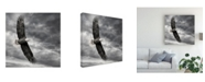 "Trademark Global PH Burchett Eagle in Flight Canvas Art - 15"" x 20"""
