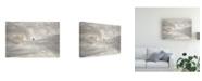 "Trademark Global Rui Caria Nazara North Canyon Canvas Art - 15"" x 20"""