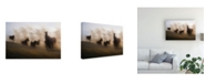 "Trademark Global Milan Malovrh Blurred Horses Canvas Art - 20"" x 25"""