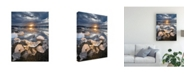 "Trademark Global Karsten Wrobel Transmission Snow Canvas Art - 20"" x 25"""