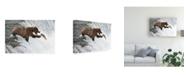 """Trademark Global Peter Stahl Unlucky Jump Canvas Art - 20"""" x 25"""""""