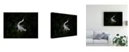 "Trademark Global Phillip Chang The Call Canvas Art - 20"" x 25"""