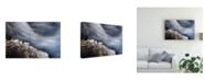 "Trademark Global Vito Miribung Ice and Water Canvas Art - 20"" x 25"""