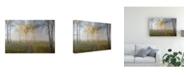 "Trademark Global Sergey Romanchuk Autumn Mood Canvas Art - 37"" x 49"""