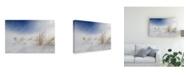 "Trademark Global Carlo Tonti Sunny Snowstorm Canvas Art - 37"" x 49"""