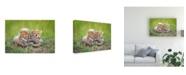 """Trademark Global Roshkumar Promising Canvas Art - 37"""" x 49"""""""