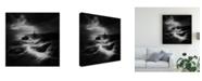 "Trademark Global Veselin Atanasov Rocky Coastline Seamark Canvas Art - 15"" x 20"""