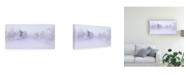 """Trademark Global Norbert Maier Deep Winter Canvas Art - 20"""" x 25"""""""