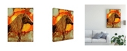 "Trademark Global Michelle Mccullough Blazen Spirit Canvas Art - 20"" x 25"""