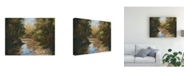"Trademark Global Mary Jean Weber Winding River Canvas Art - 15"" x 20"""