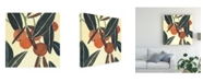"Trademark Global Melissa Wang Kumquat II Canvas Art - 19.5"" x 26"""