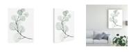 "Trademark Global Jennifer Paxton Parker Silver Dollars I Canvas Art - 27"" x 33.5"""