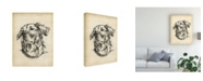 "Trademark Global Ethan Harper Breed Studies VIII Canvas Art - 27"" x 33.5"""