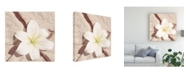 "Trademark Global Jason Johnson Floral Canvas Art - 15.5"" x 21"""
