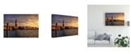"Trademark Global Danny Head Birds View Canvas Art - 27"" x 33.5"""