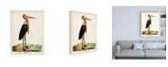 "Trademark Global John Latham Gigantic Crane Canvas Art - 15.5"" x 21"""