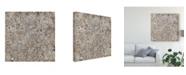 "Trademark Global Tim Otoole Multiplicity I Canvas Art - 15"" x 20"""