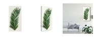 "Trademark Global Naomi Mccavitt Tropical Breeze Leaves V Canvas Art - 20"" x 25"""