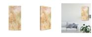 "Trademark Global Prunis Dulcis Sweet Mystery II Canvas Art - 20"" x 25"""