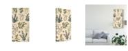 "Trademark Global Prunis Dulcis Wild Spikes I Canvas Art - 37"" x 49"""