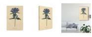 "Trademark Global Wild Apple Portfolio Campanula Vintage Canvas Art - 20"" x 25"""