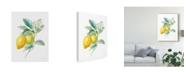 "Trademark Global Danhui Nai Floursack Lemon Ii on White Canvas Art - 20"" x 25"""