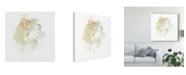 "Trademark Global June Erica Vess Liquid Echo IV Canvas Art - 27"" x 33"""