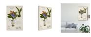 """Trademark Global Naomi Mccavitt Orchid Field Notes II Canvas Art - 37"""" x 49"""""""