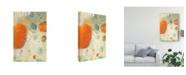 "Trademark Global Sue Jachimiec Phenix I Canvas Art - 20"" x 25"""