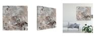 "Trademark Global Tim Otoole Neutral Display I Canvas Art - 20"" x 25"""