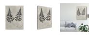 "Trademark Global Vision Studio Vintage Fern Study I Canvas Art - 15"" x 20"""