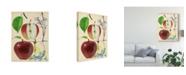 "Trademark Global Melissa Wang Apple and Blossom Study II Canvas Art - 15"" x 20"""