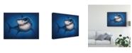 "Trademark Global Patrick Lamontagne Shark Totem Canvas Art - 15"" x 20"""
